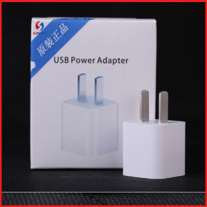 Original 5V 2.1 a Phone USB Charger Adapter for iPhone6/6s pictures & photos