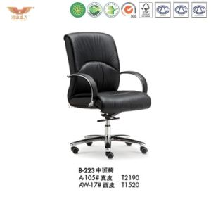 Office Furniture Wooden Office Chair (B-223)