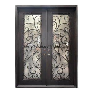 Custom Wrought Iron Entry Door with Artwork pictures & photos