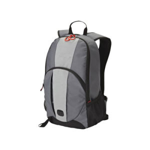 Leisure School Backpack Computer Bag Outdoor Bag pictures & photos