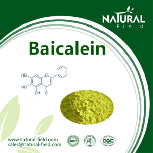 Best Sells Product 98% Baicalein pictures & photos