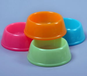 China New Pet Product, Color Pet Bowl pictures & photos