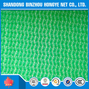 Green HDPE Knitted Construction Scaffolding Safety Net pictures & photos