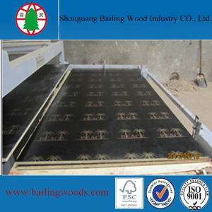 Low Price Finger Joint Film Faced Plywood
