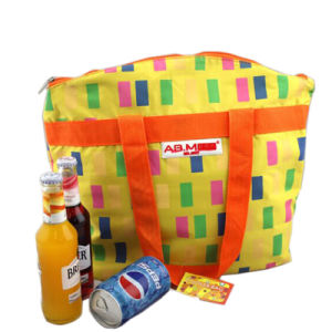 Fancy Cute Cooler Bag for Lunch Box