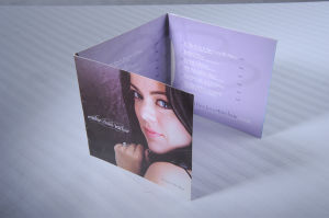 USA 6panel CD Replication with Cardboard Packing
