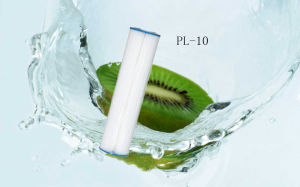 Household Home Pl-10 5 Micron Water Filter Sediment Filtration Replacement Cartridges pictures & photos