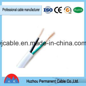 Low Voltage PVC Insulated Cable BV/BVV/BVVB/RV/Rvv/Rvvb pictures & photos