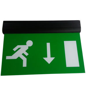 Double Sides Maintained Emergency Exit Sign with 10PCS LED (DSL010AM)
