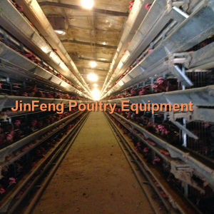 Design Layer Chicken Cage/Automatic Poultry Farming Equipment for Poultry Chicken Farm pictures & photos