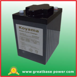 High Quality Deep Cycle Battery 225ah 6V pictures & photos