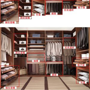 Walk-in Closet, Bvior Clo-Akrrom, Wardrobe pictures & photos