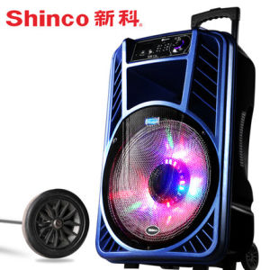 Good Quality 15 Inches Plastic Luggage Trolley DJ Speaker pictures & photos