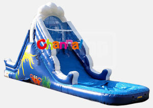 14′ Oasis Inflatable Water Slide with Pool/Kids Inflatable Water Slide Bb063 pictures & photos