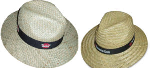 Promotion Straw Hat pictures & photos