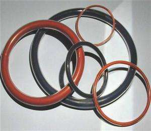 Quality O-Ring Coating with Fluorine Rubber pictures & photos