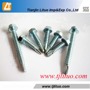 Galvanized or Painted Head Hex Head Roofing Screws pictures & photos
