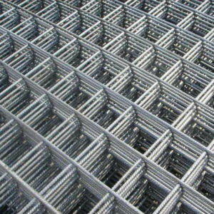 304 Material 3/4′′*1.2*1m*30m Welded Wire Mesh pictures & photos