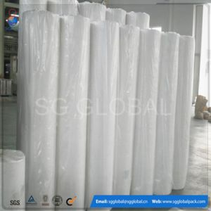 20GSM White PP Non Woven Fabric for Frostproof pictures & photos