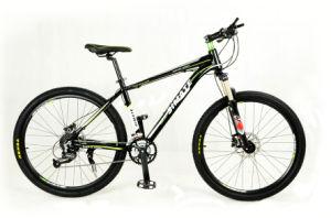 Nice Design Lady Bike Sr-L1040 pictures & photos