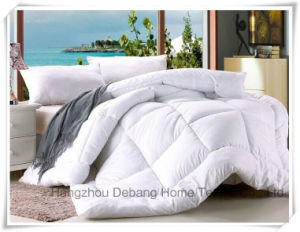 Holiday Inn Special White Soft Bedding Sets pictures & photos