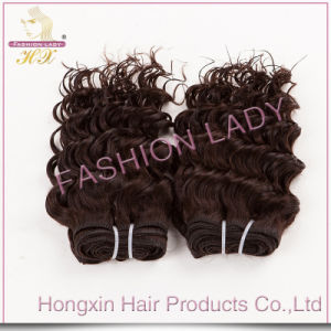 Factory Price Human Hair/Remy Hair/Brazilian Human Weft Hair