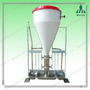 Pig Farm Equipment of Dry-Wet Feeder pictures & photos