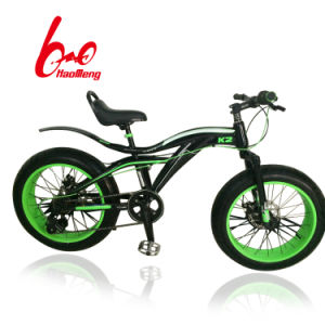 Popular Good Price BMX Bicycle pictures & photos