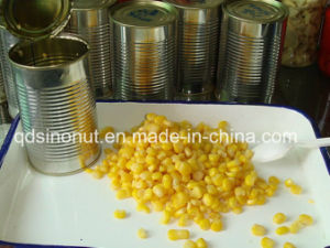 New Crop Canned Sweet Cron with Vacuum Packing pictures & photos