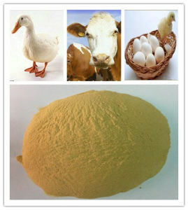 Hot Selling Yeast Powder Used in Feeds pictures & photos