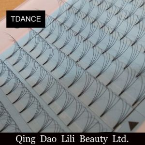 Hot Selling 0.05mm 0.07mm 0.10mm Premade Volume Lash Fans 4D Volume Lashes 4D 6D Individual Lashes Knot Free Cluster Eyelashes Private Label pictures & photos