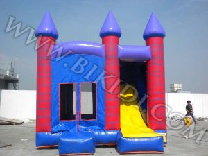 Inflatable Castle, Inflatable Combo for Commercial Use (B3013) pictures & photos