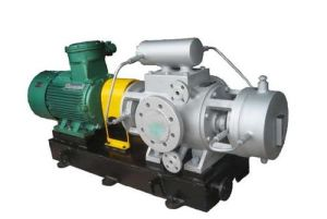 Twin Screw Pump pictures & photos