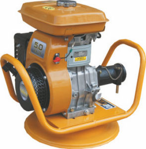 Chinese Engine Concrete Vibrator with Different Coupling pictures & photos