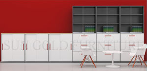 Professional OEM Supplier New Arrived Filing Cabinets (SZ-FC057) pictures & photos