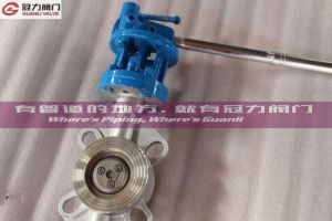 Stainless Steel Triple Offset Butterfly Valve pictures & photos