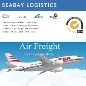 Cheapest Air Freight/Air Shipping Charges/Air Shipping Cost From China to Johannesburg South Africa pictures & photos