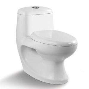 St-1028 Water Closet Washdown One Piece Ceramic Toilet