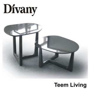 Divany Living Room Furniture MDF Glass Table Feet MDF Glass Table Feet Apartment Glass Coffee Table T-57D pictures & photos