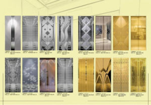 Passenger Elevator / Passenger Lift Various Capacity, Speed and Design pictures & photos