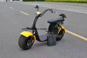 Factory Citycoco Removable Battery Front Rear Hydraulic Disc Brake Promotion Product E-Scooter pictures & photos