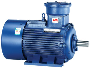 Yb2 Explosion-Proof Three Phase Induction Motor with CE Certificate pictures & photos