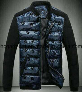Fashion Outdoor Garments, Blue Ski Down Fleece Winter Jacket for Man pictures & photos