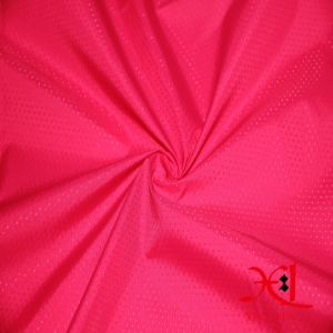 Waterproof Nylon Taffeta Fabric for Down Jacket Fabric/Lining Garment Fabric pictures & photos