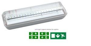 Rechargeable Battery Backup IP65 Outdoor Use Maintained LED Emergency Light pictures & photos