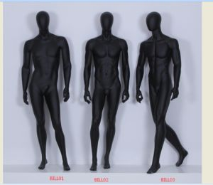 Fiberglass Mannequin Leg Torso pictures & photos