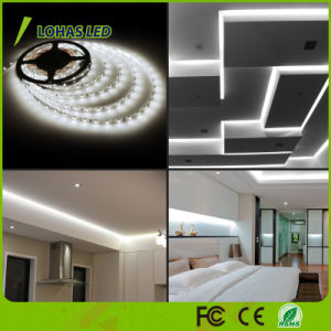 RGBW IP65 Waterproof Color Changing SMD 5050 2835 12V 220-240V Flexible LED Strip Light with Remote Controller pictures & photos