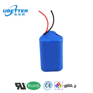 11.1V 3000mAh Rechargeable Battery for Bike Light and LED Indicator pictures & photos