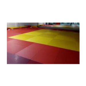 Competitive Price Exercise Judo Mats Gymanstics Mat for Sale pictures & photos