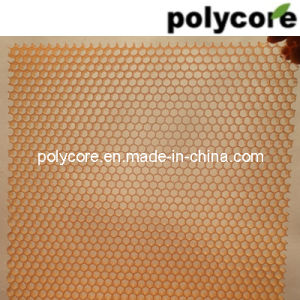 Plastic Honeycomb Board for Decoration pictures & photos